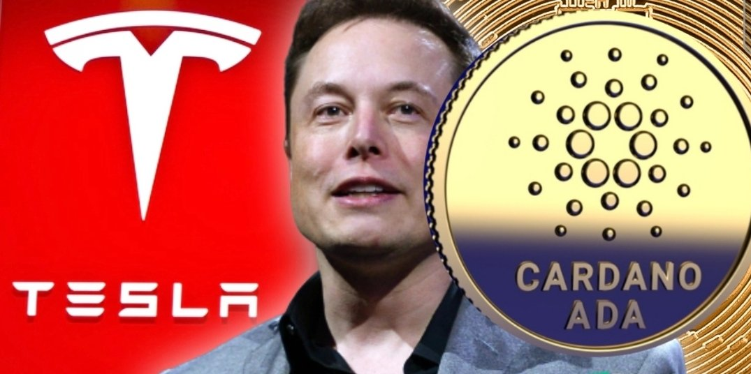 Is Cardano a Possible Alternative For Tesla? ADA Price Hits New Heights