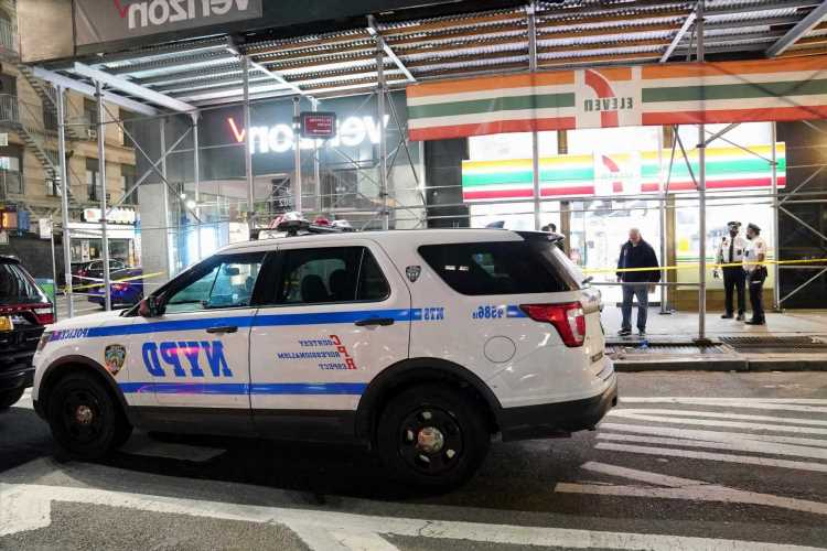 It's stray-zy out there! NYC needs new war on guns