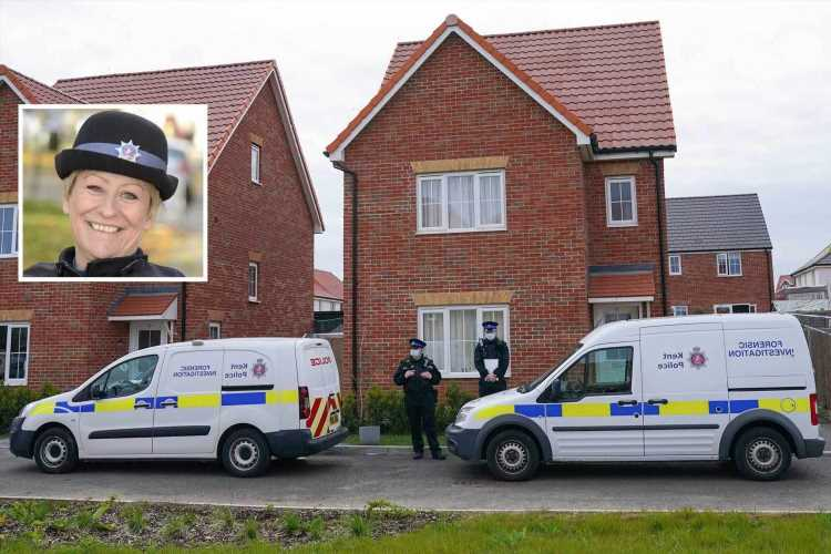 Julia James' murder: Cops 'hunt for murder weapon' near Aylesham home as police continue to quiz man over PCSO murder