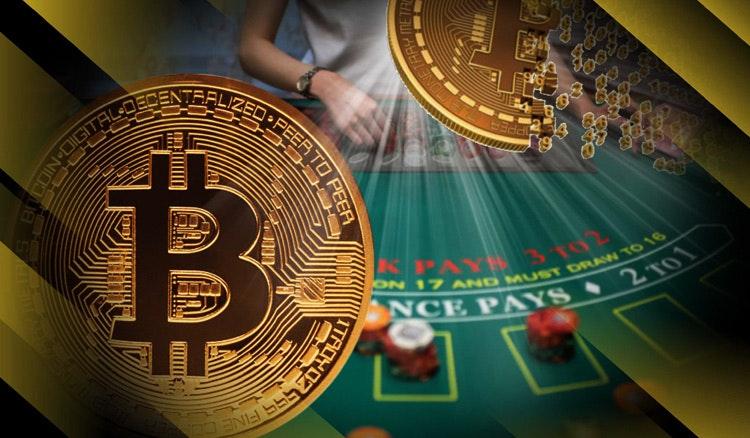 Live Dealer BTC Casino Games – What Can I Play?
