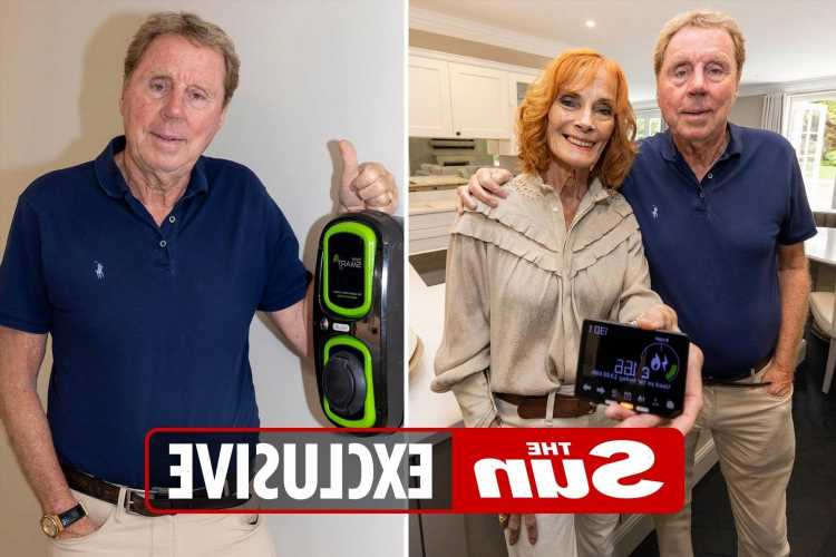 Harry Redknapp transforms house into ultimate eco-pad and goes green for his grandkids