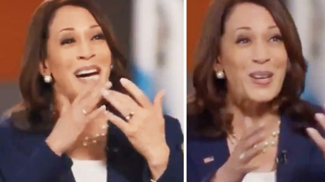 Kamala Harris laughs AGAIN when asked whether she'll visit border and says there's no 'quick fix' to stop migrant surge
