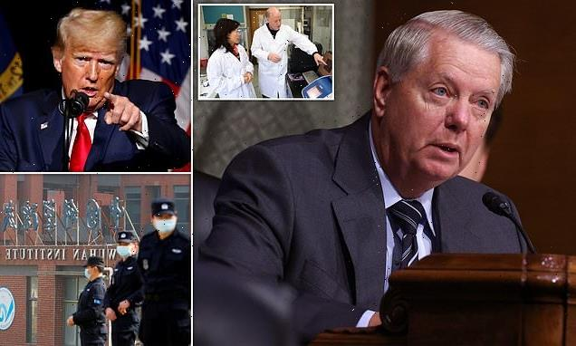 Lindsey Graham accuses Lancet letter of 'trying to destroy Trump