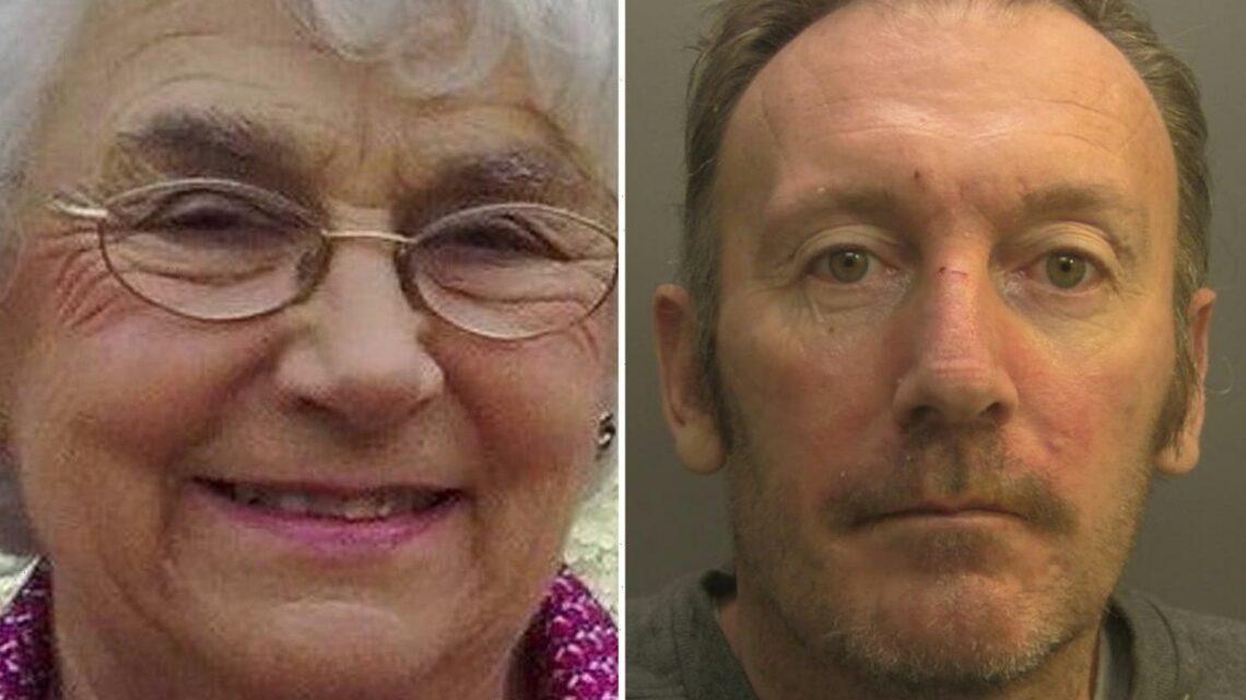 OAP, 87, beaten to death with a cricket bat as she gardened by mentally ill man who yelled 'kill, kill, kill'