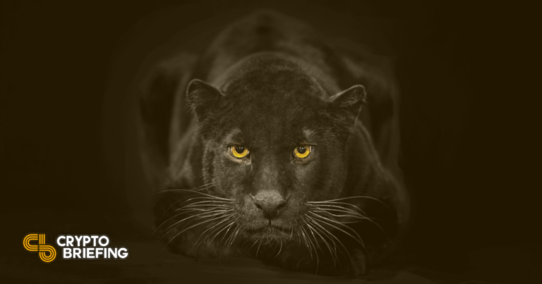 Panther Protocol Raises $8M for DeFi Privacy Solution