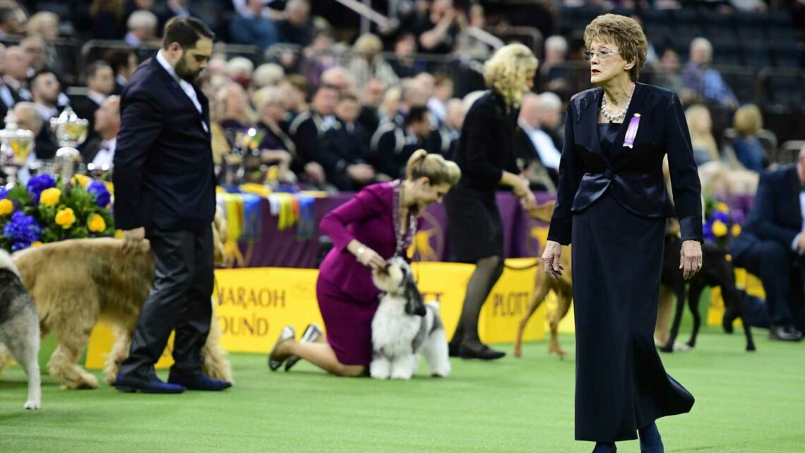 Westminster royalty: A champion, teacher and lover of hounds, Patricia Trotter will rule Best in Show