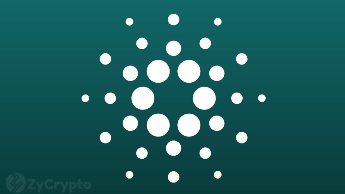 A Look At The Secret To Cardano (ADA)'s Success As A Top Choice For Hodlers