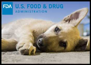 FDA Grants First Full Approval To Tanovea To Treat Lymphoma In Dogs