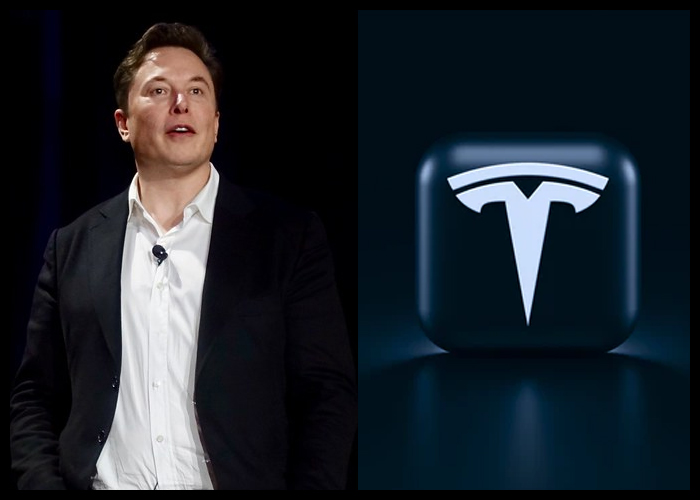 Musk Says He Never Wanted To Be CEO Of Tesla