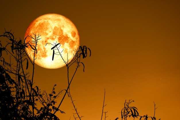 Astro Crypto: Summer Bitcoin Slump Could Bring Bountiful Fall Harvest
