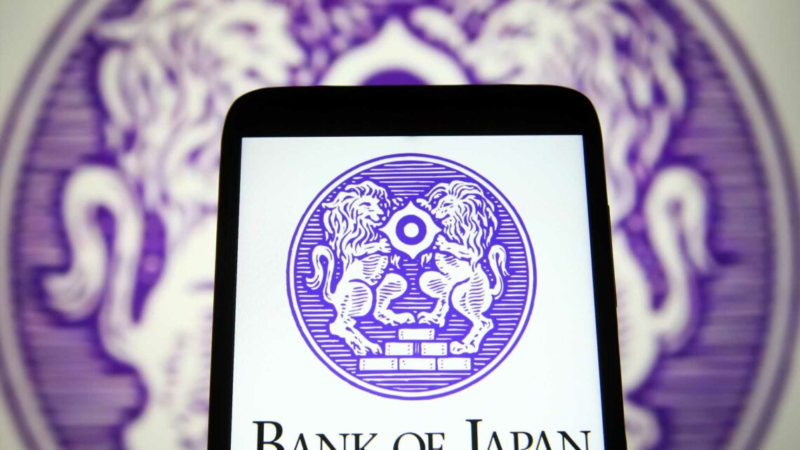 Bank of Japan's deputy governor warns against premature monetary tightening