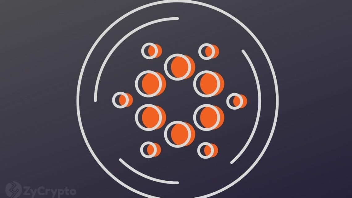 """Big Things Coming: Cardano Plans To Make """"Industry-Defining Announcements"""" This Weekend"""