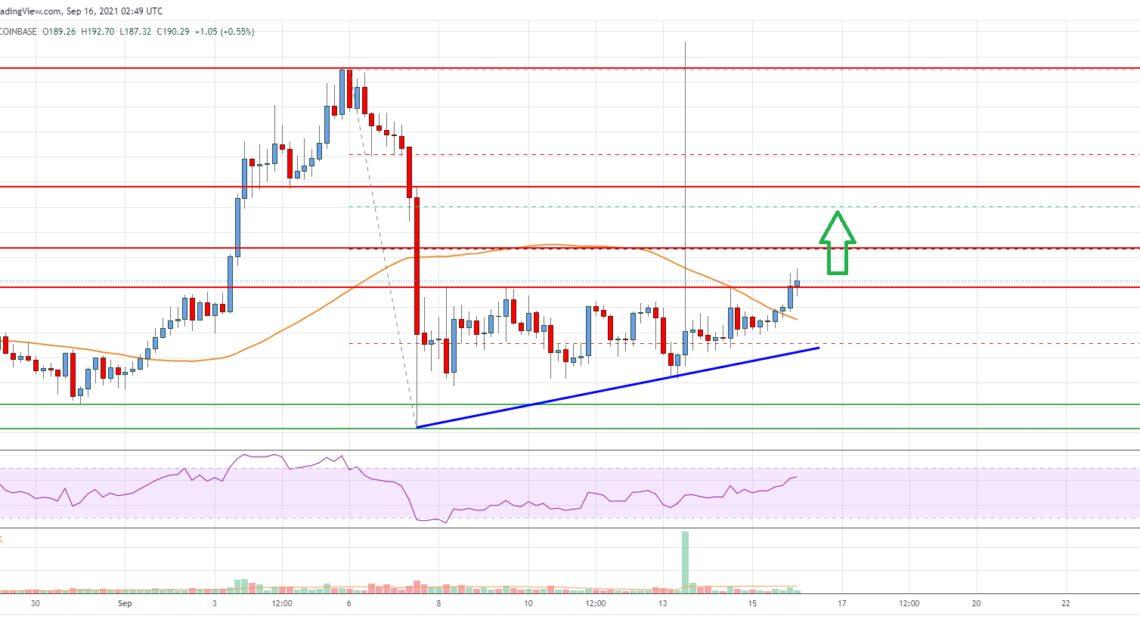 Litecoin (LTC) Price Analysis: Bulls Aim Rally above $200