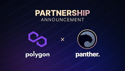 Panther And Polygon Are Taking Privacy To New Heights In DeFi
