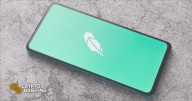 Robinhood to Launch Crypto Wallet in 2022