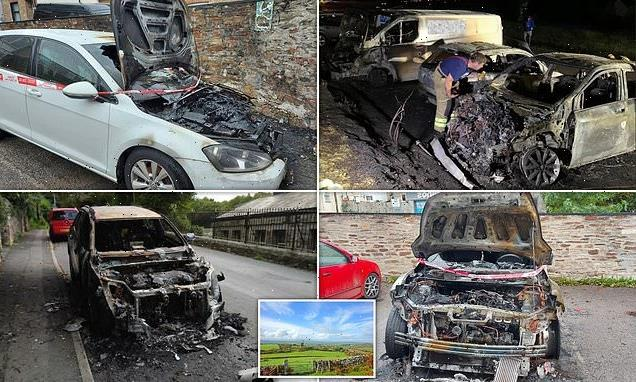 'Serial arsonist' hunted by police after 11 cars torched in a month