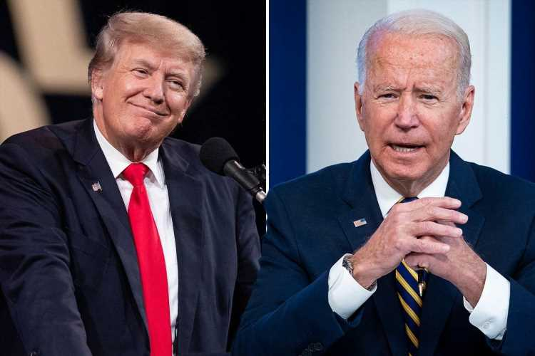 Trump a 'clear favorite' to replace Biden, poll says, as Americans 'fed up' of president 'ignoring the border crisis'