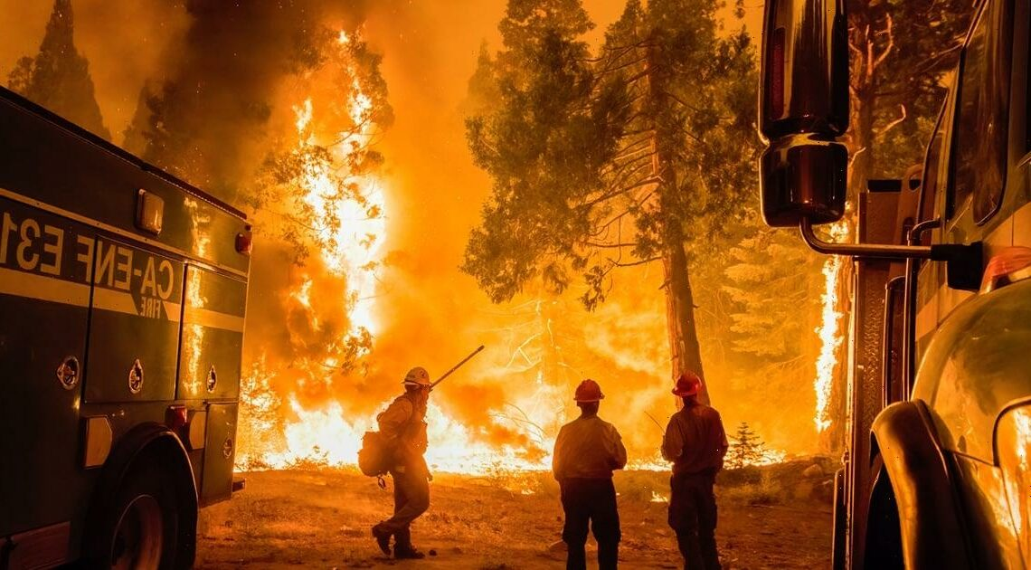 California Is Facing Another Wave of Devastating Wildfires — Here's How You Can Help