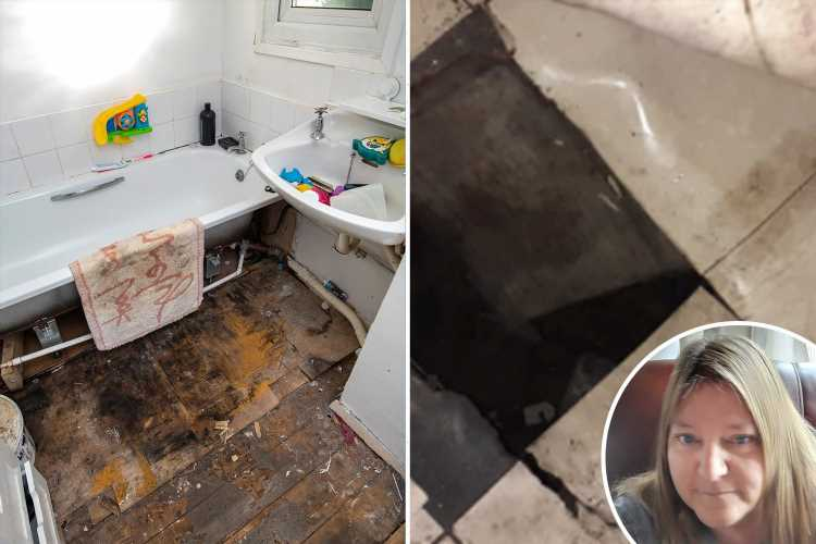 Gran's foot plunges through rotting floor to 7ft drop as grandson, 3, struggles to breathe in mouldy council house