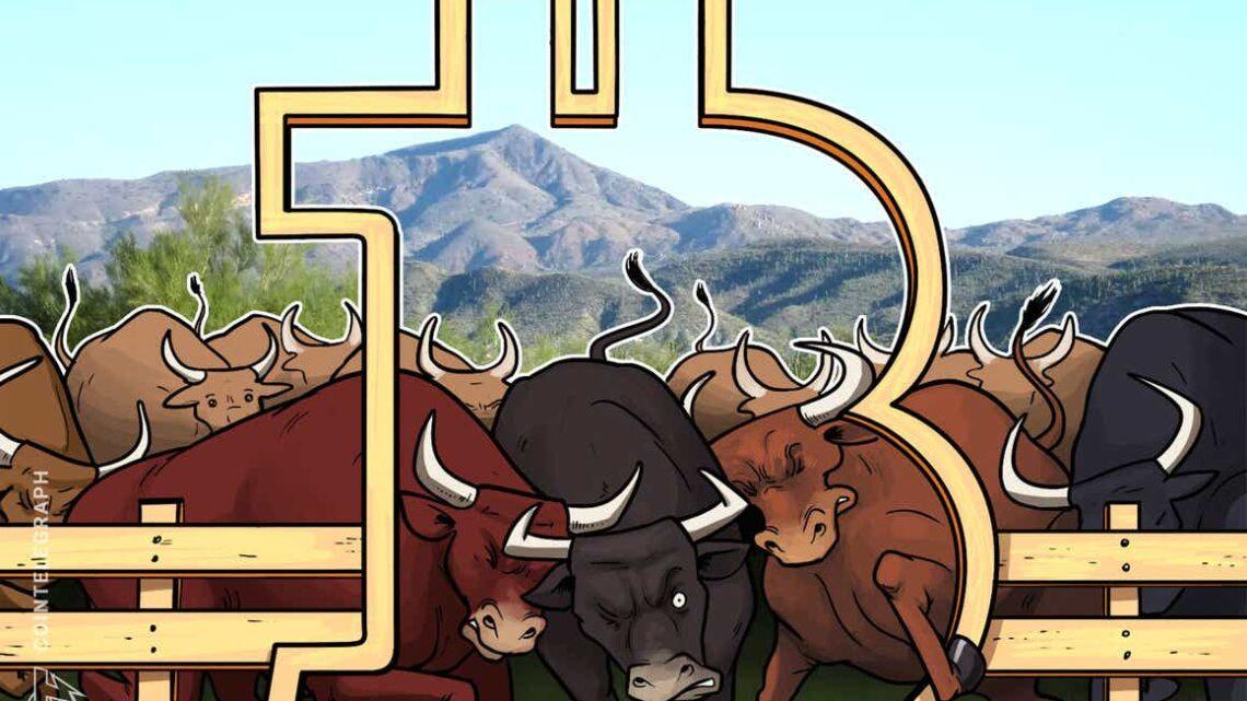 Long-term Bitcoin bulls hodl strong despite five-month price high