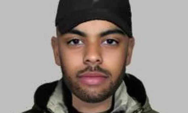Police issue E-fit of suspect accused of sexual assault