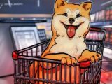 Shiba Inu surges over 45% in two days to reach an all-time high